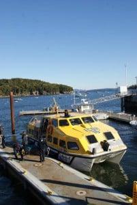 Tender Bar Harbor mit AIDA