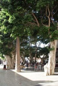 Plaza de la Constitution San Sebastian