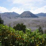 Blick auf die Vulkanlandschaft